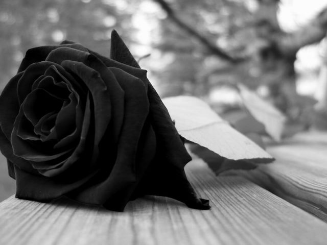 Acoso y violencia contra comunidad lésbico-gay llevan al suicidio